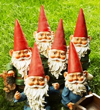 gnomes waiting for gardening advice and tips