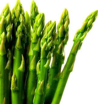 growing asparagus spears