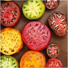 Colored heirloom tomatoes
