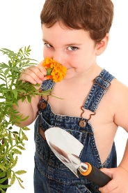 Kids gardening activities- boy smelling flowers
