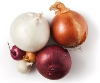 Growing Onions How To Grow Onions With Tips Pest