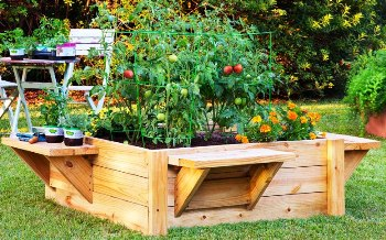 raised bed and seats or benches