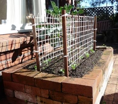 raised brick garden