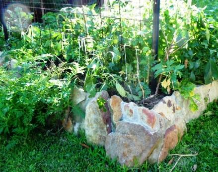 raised stone vegetable garden