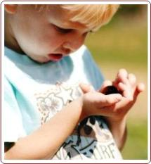 Teaching nature to kids - boy holding bug