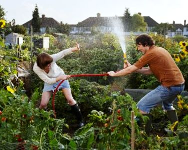 Fun Fight on Community Garden Allotment