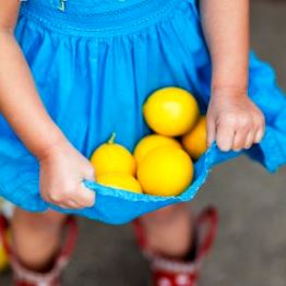 How to grow lemons - girl in blue dress