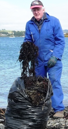 Seaweed for garden - George NZ