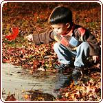 Teaching kids to garden - small boy playing with leaves and water