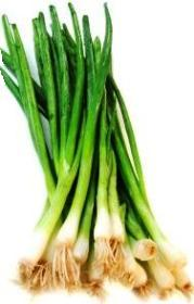 growing spring onions – how to grow scallions