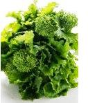 Broccoli varieties - broccoli Raab