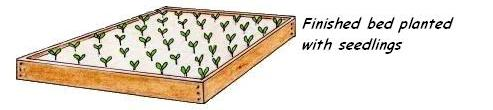 Building a vegetable garden top layer