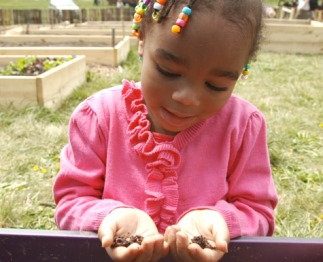 Girl holding seeds in hands