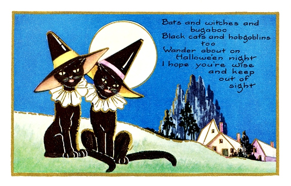 Halloween witch cats