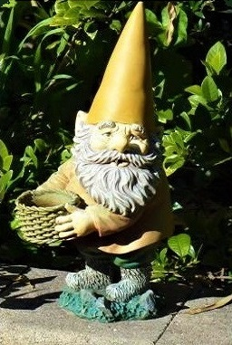 Gnome wanting money