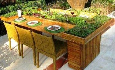 table with vegetables growing in it