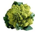 Romanesco broccoli varieties
